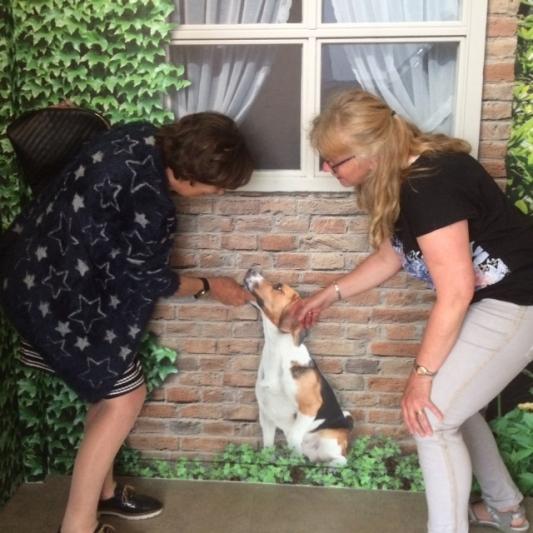 Hondje Fikkie op muurschildering